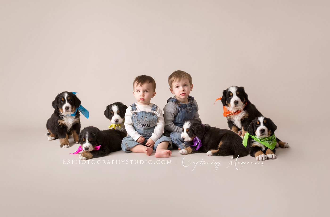 Miller Family Mini | Studio Mini Session with Puppies